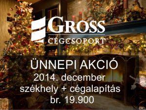 Karácsonyi akció 2014. decemberben - székhelyszolgáltatás és cégalapítás egy csomagban, akár cégmódosítás is!